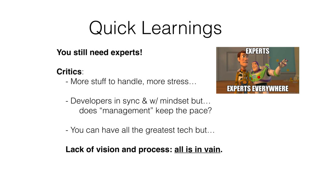 Quick Learnings You still need experts! Critics...