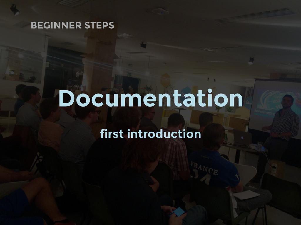 BEGINNER STEPS Documentation first introduction