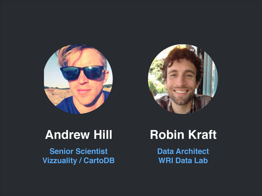 Senior Scientist! Vizzuality / CartoDB Andrew H...