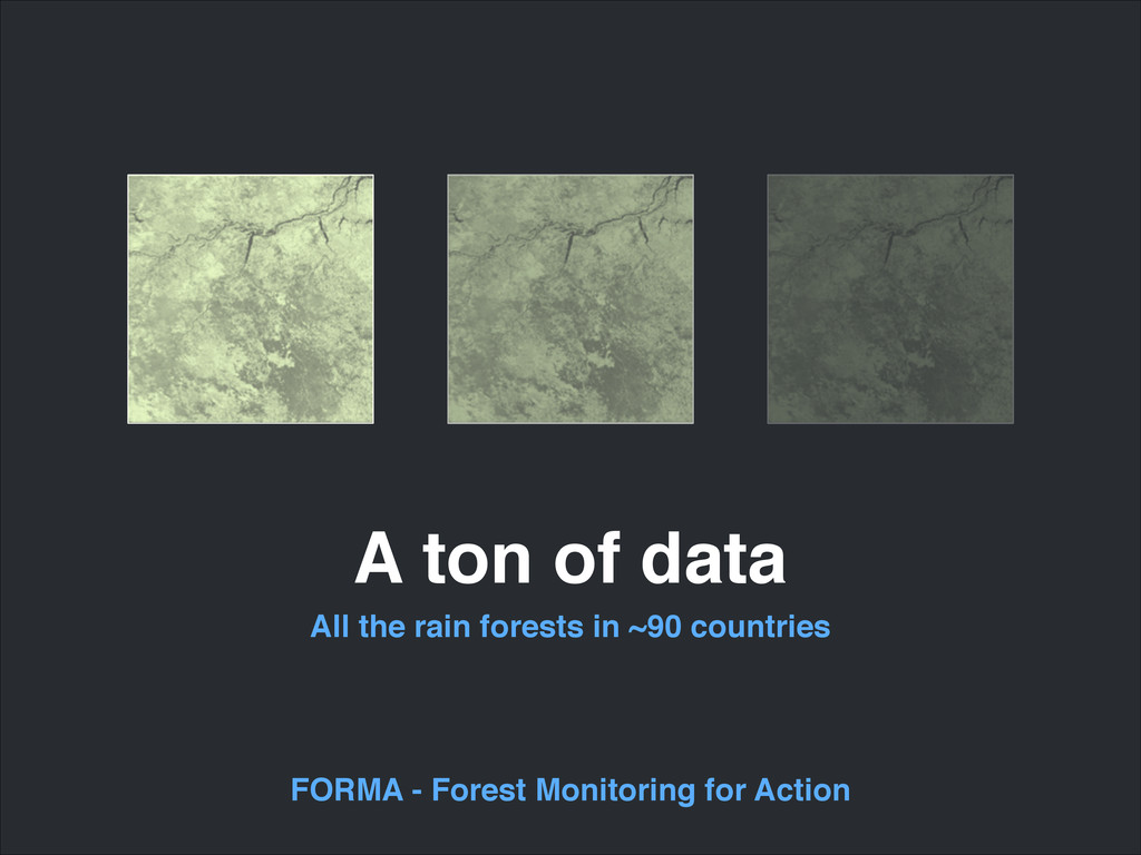 A ton of data All the rain forests in ~90 count...