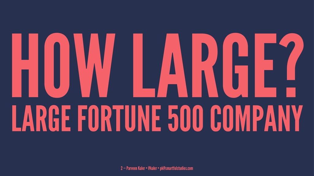 HOW LARGE? LARGE FORTUNE 500 COMPANY 2 — Parvee...