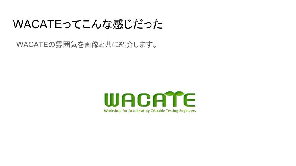 WACATEってこんな感じだった WACATEの雰囲気を画像と共に紹介します。