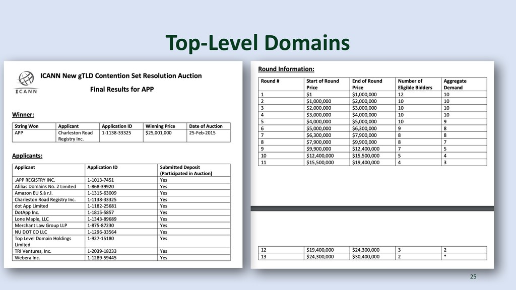 Top-Level Domains 25