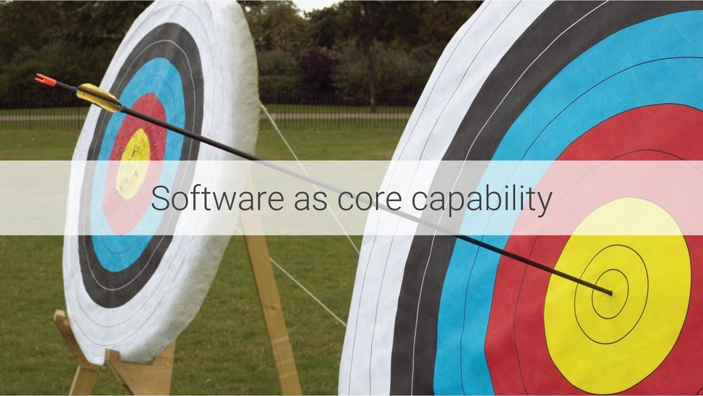 Software as core capability