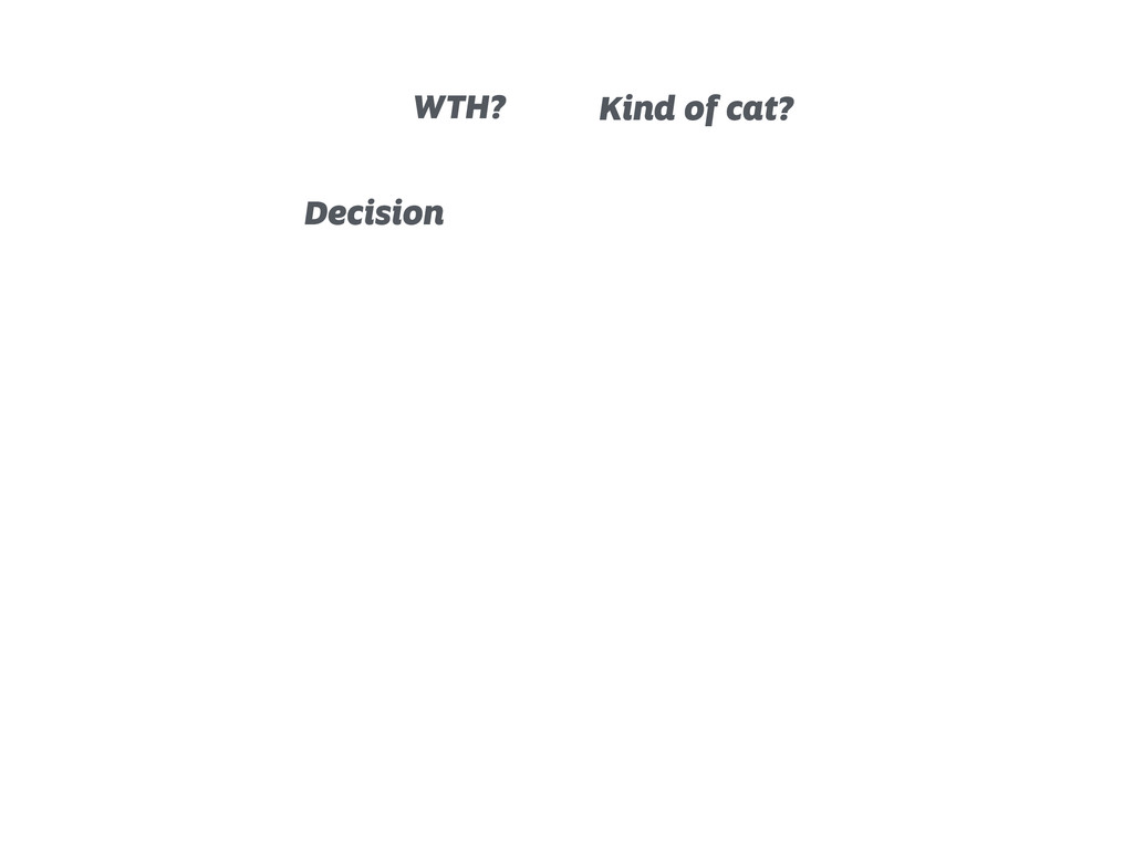 Decision WTH? Kind of cat?