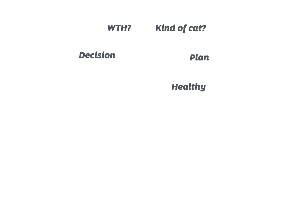 Decision WTH? Kind of cat? Plan Healthy