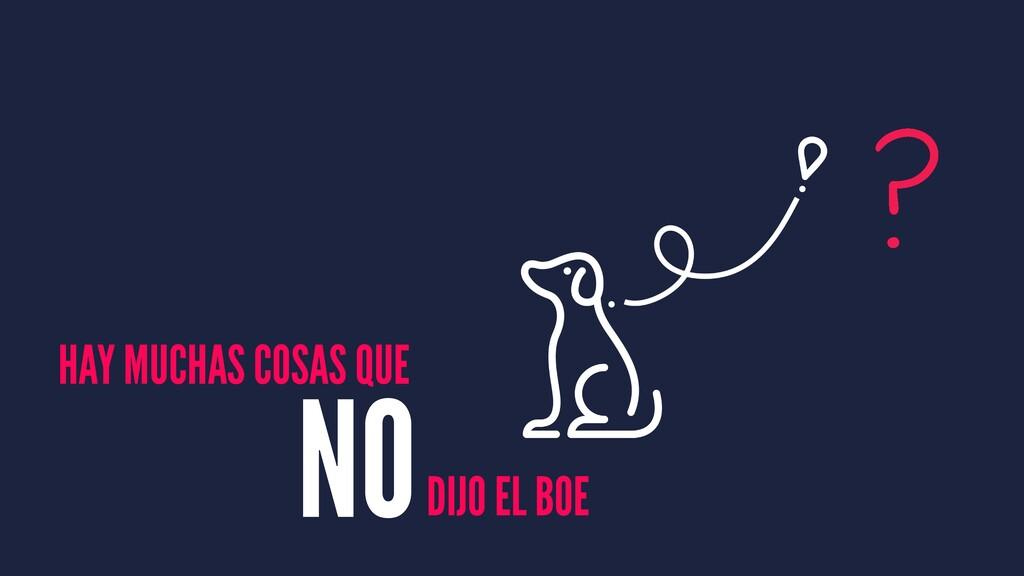 HAY MUCHAS COSAS QUE DIJO EL BOE NO