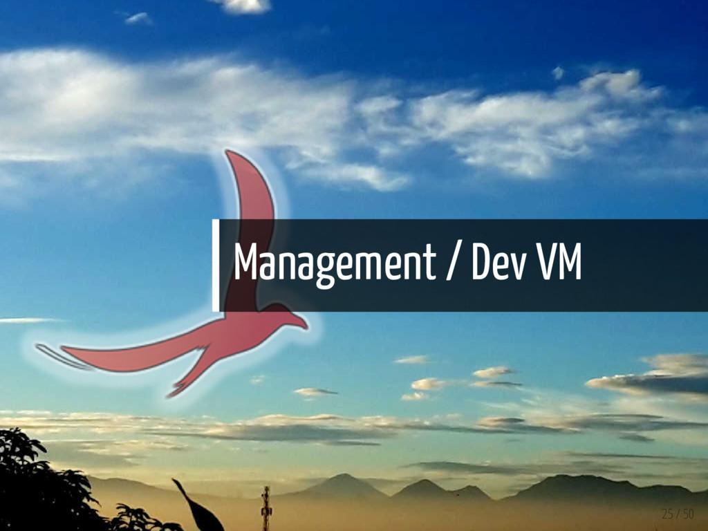 Management / Dev VM 25 / 50