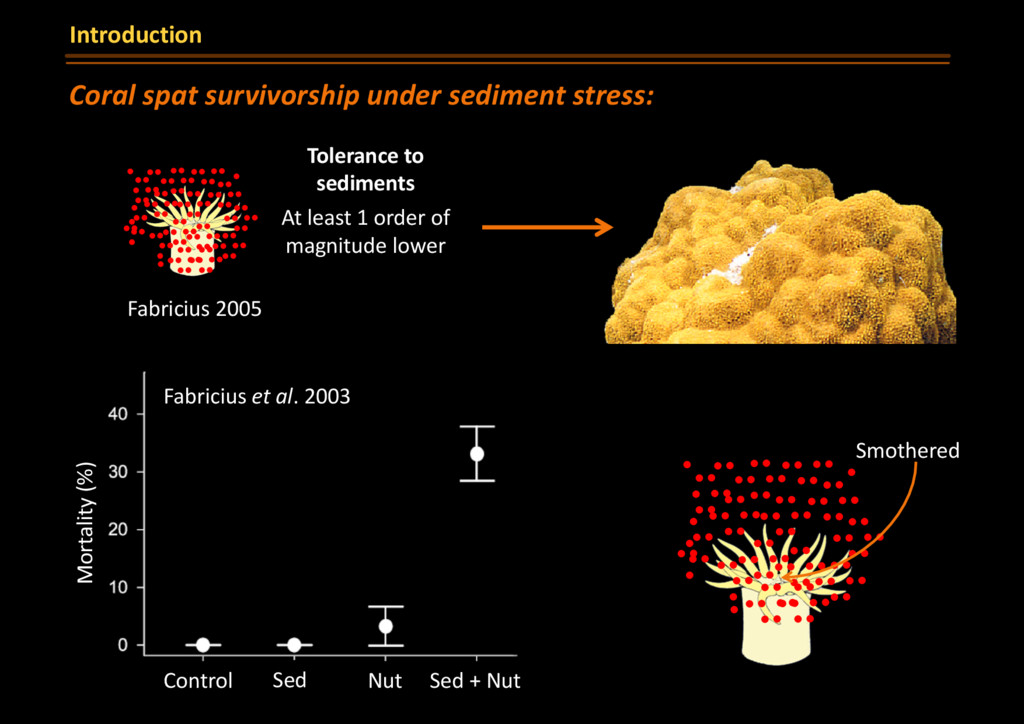 Smothered Sed Fabricius et al. 2003 Control Nut...