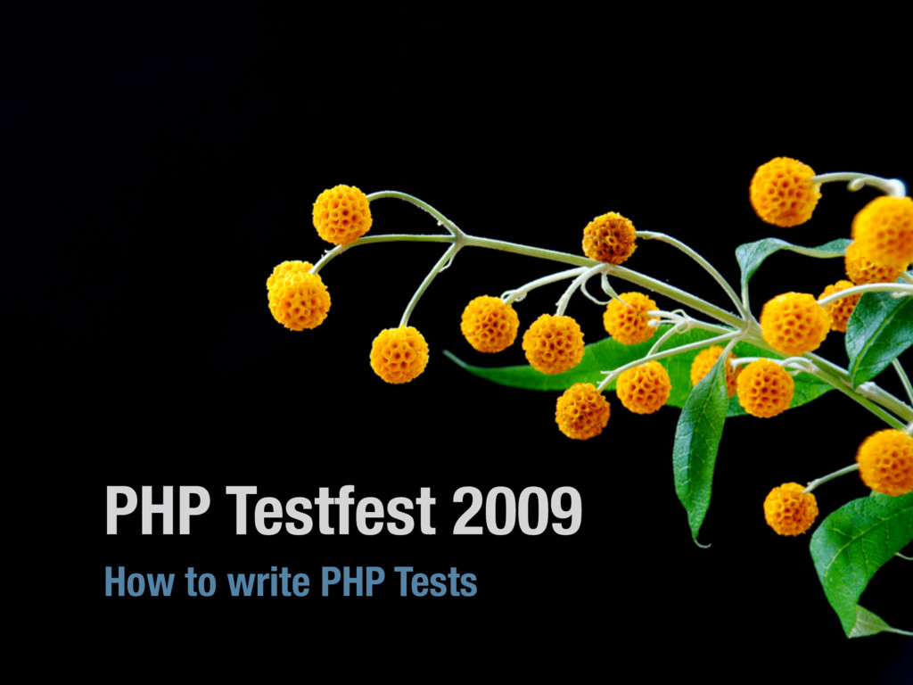PHP Testfest 2009 How to write PHP Tests