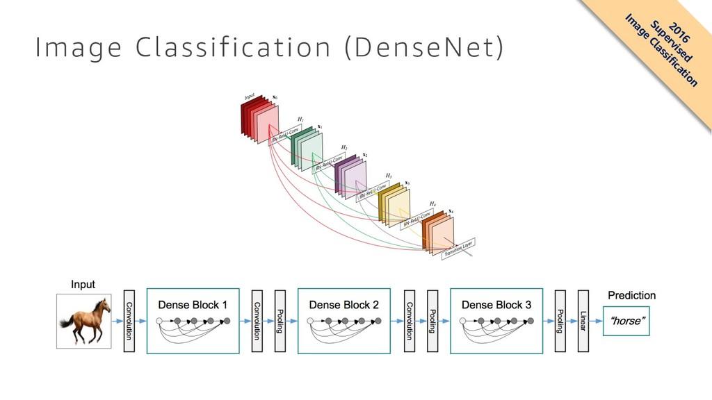 Image Classification (DenseNet) 2016 Supervised...