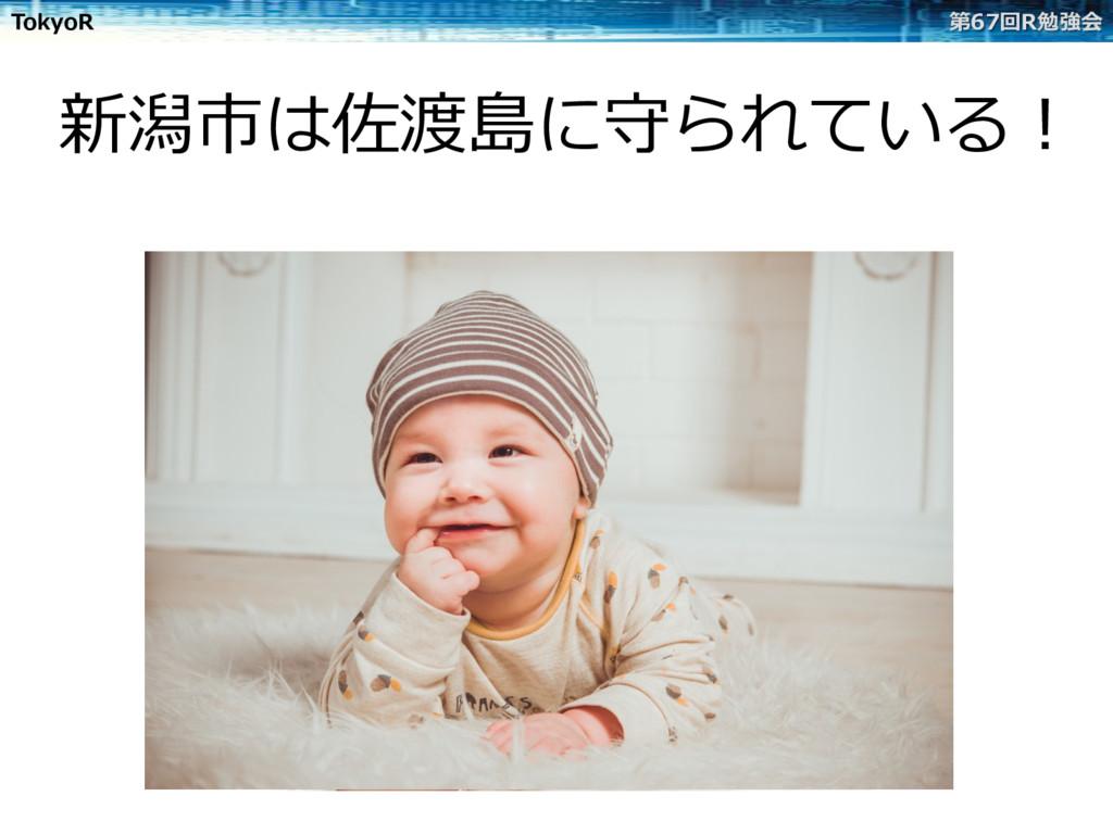 TokyoR 第67回R勉強会 新潟市は佐渡島に守られている!