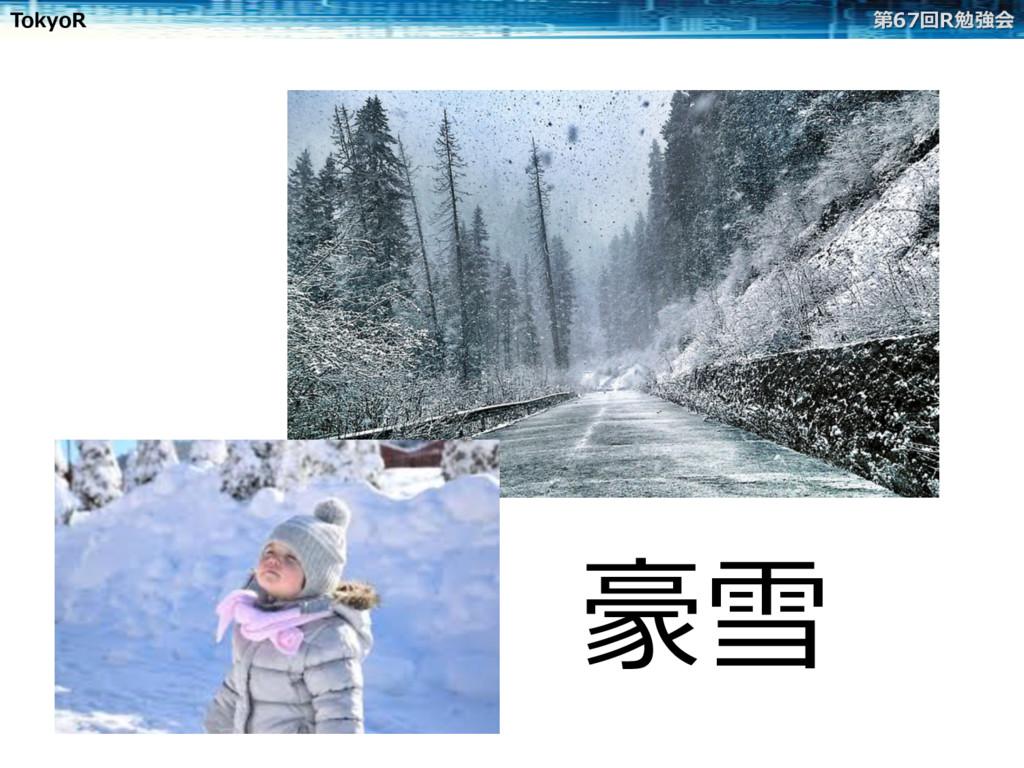 TokyoR 第67回R勉強会 豪雪