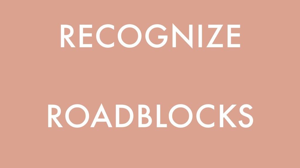 RECOGNIZE ROADBLOCKS