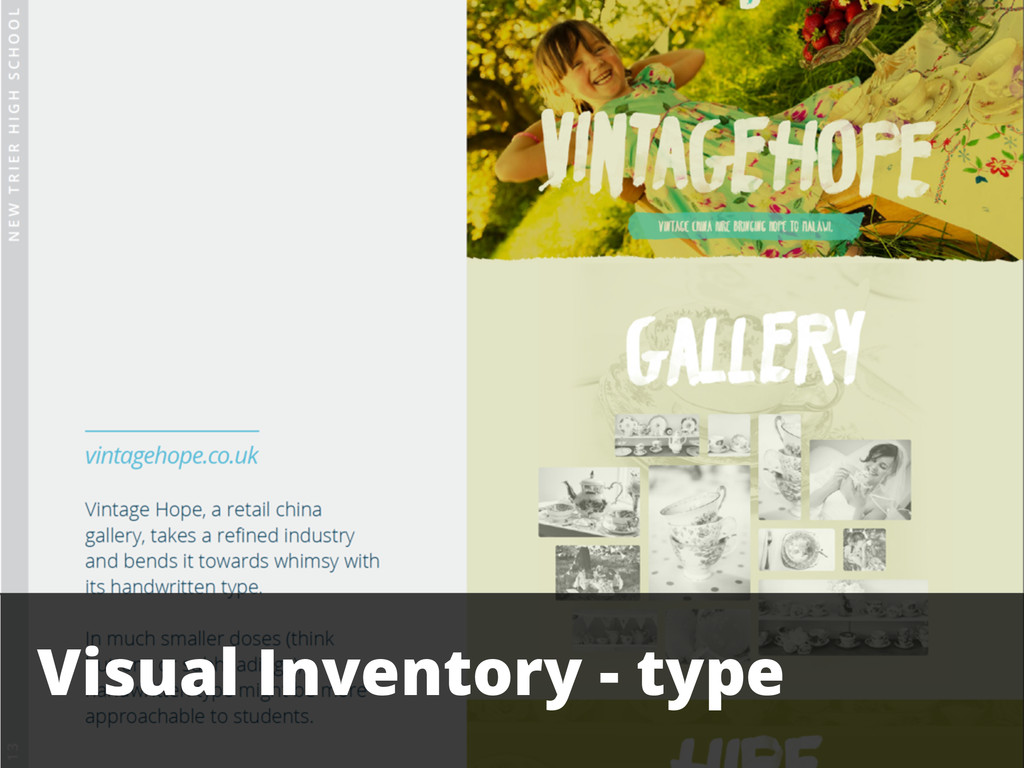Visual Inventory - type