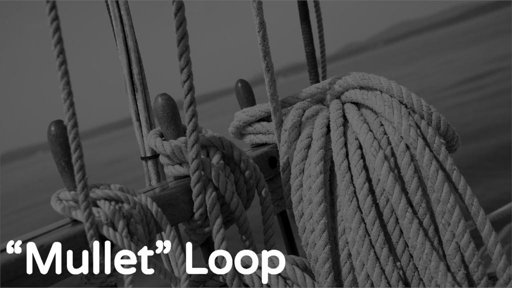 """The standard Loop """"Mullet"""" Loop"""