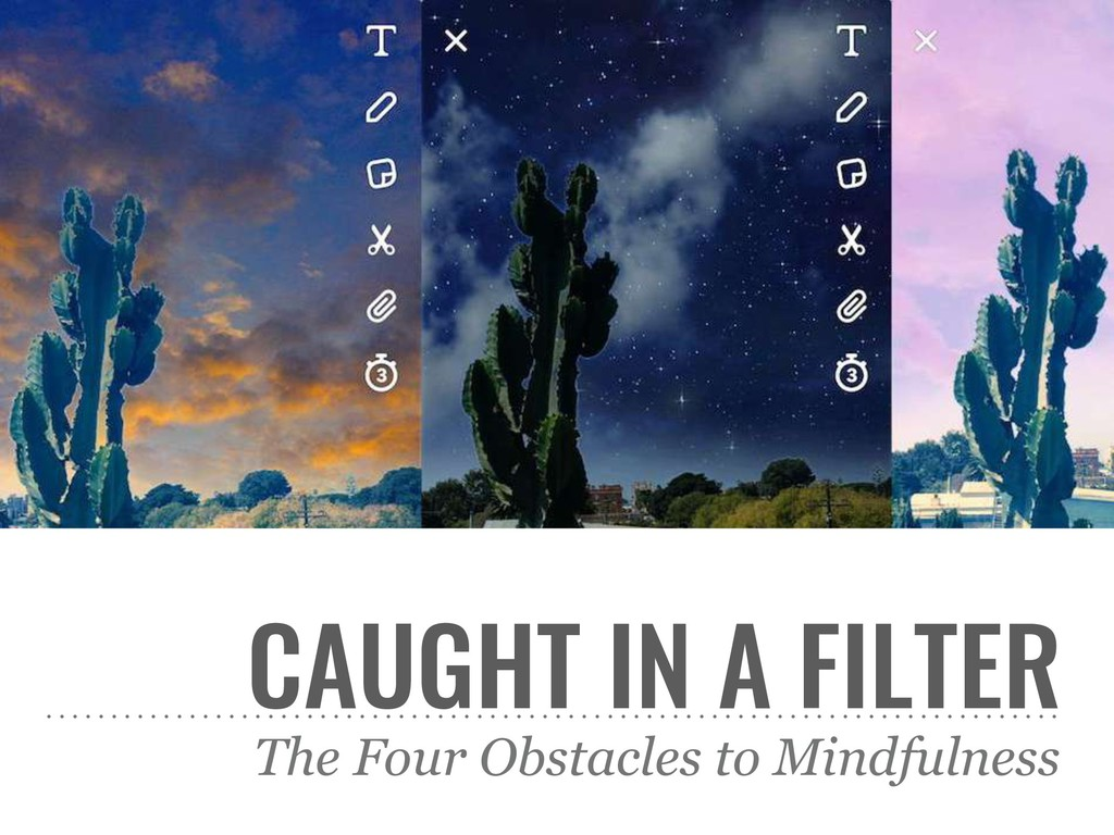 CAUGHT IN A FILTER The Four Obstacles to Mindfu...