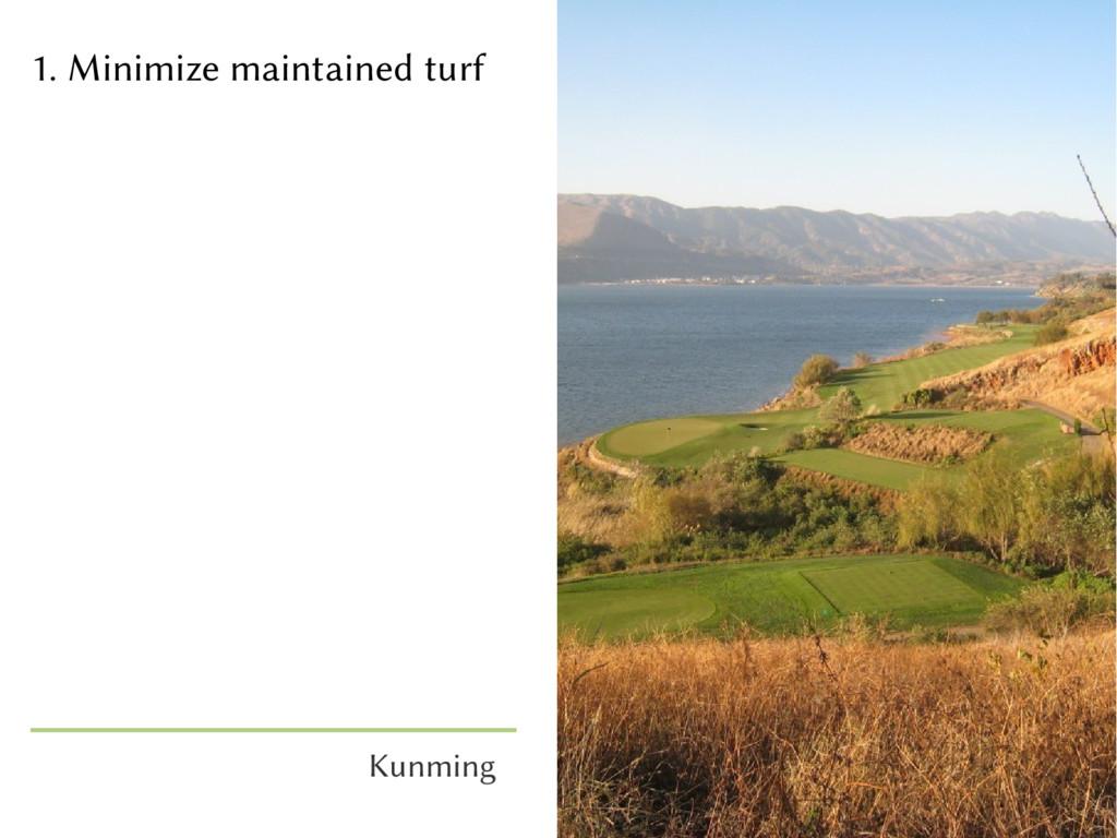 1. Minimize maintained turf Kunming