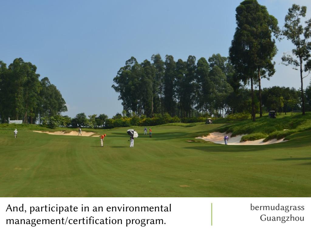 bermudagrass Guangzhou And, participate in an e...