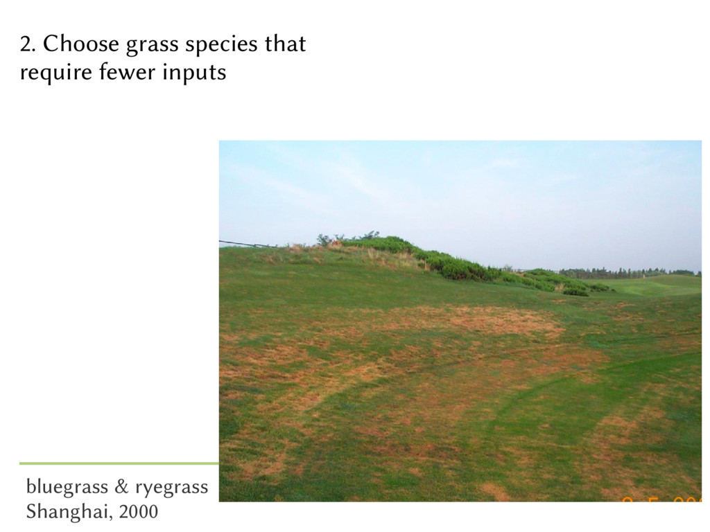 2. Choose grass species that require fewer inpu...