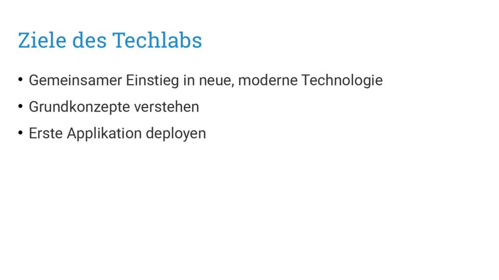 Ziele des Techlabs • Gemeinsamer Einstieg in ne...