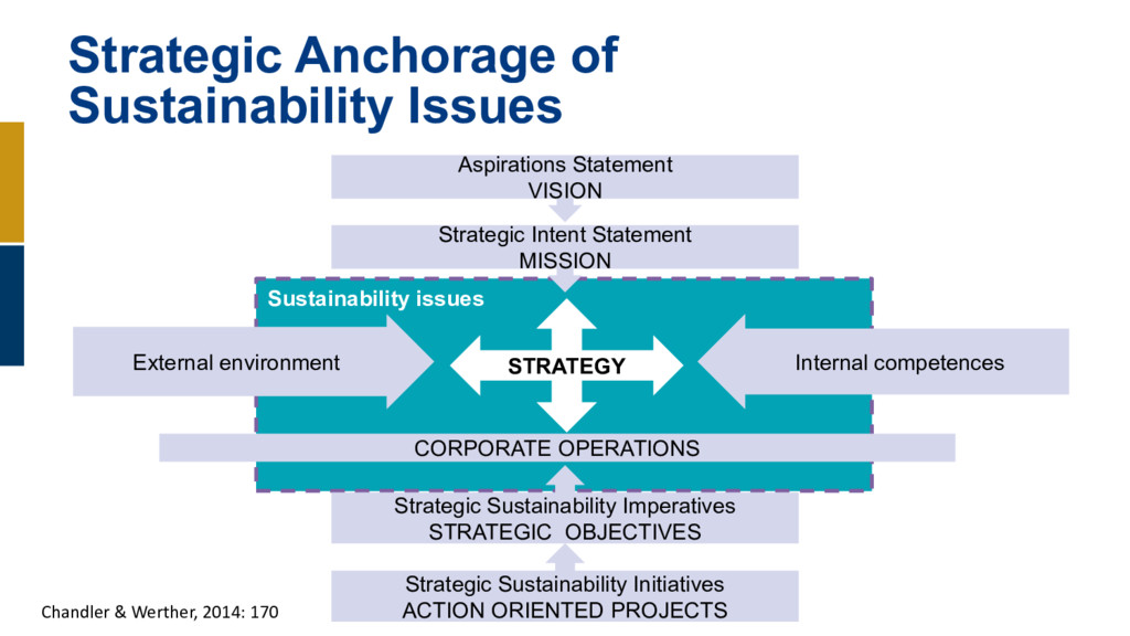 Strategic Anchorage of Sustainability Issues As...