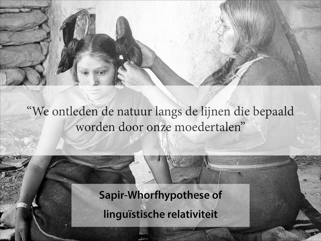 Sapir-Whorfhypothese of linguïstische relativit...