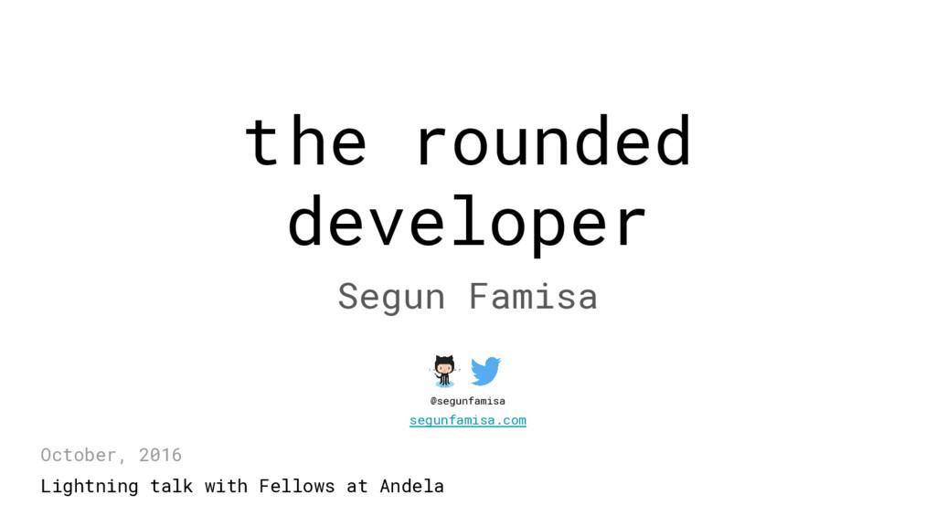 the rounded developer Segun Famisa Lightning ta...