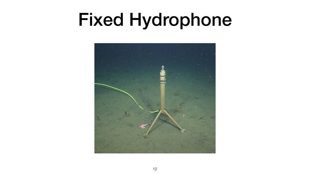 Fixed Hydrophone !12