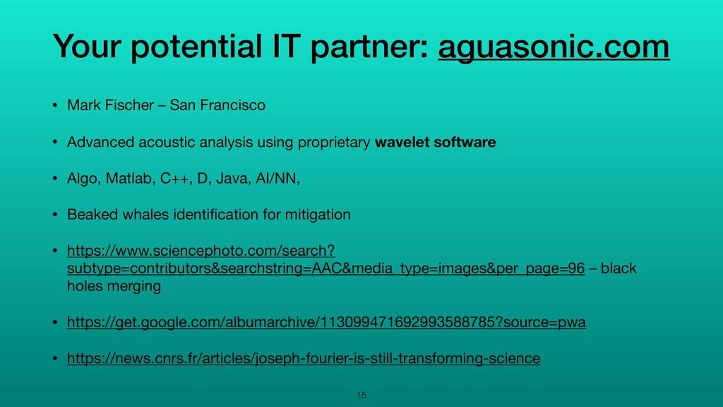 Your potential IT partner: aguasonic.com • Mark...