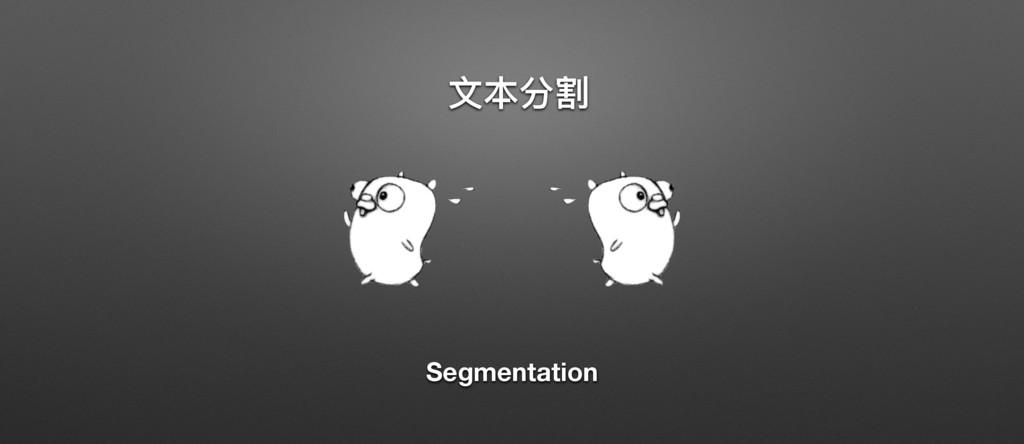 ړۆ Segmentation