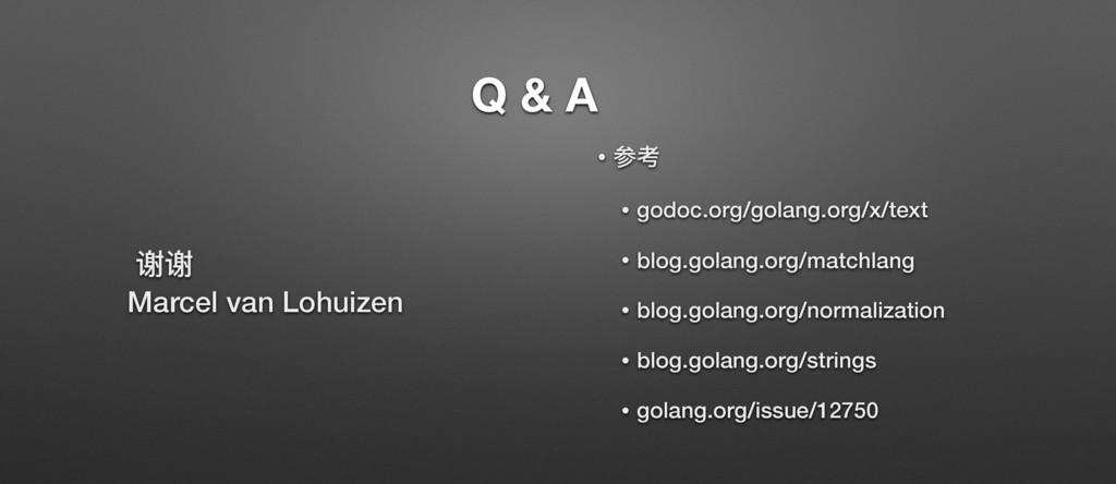 Q & A ᨀᨀ Marcel van Lohuizen • ݇ᘍ • godoc.org/g...