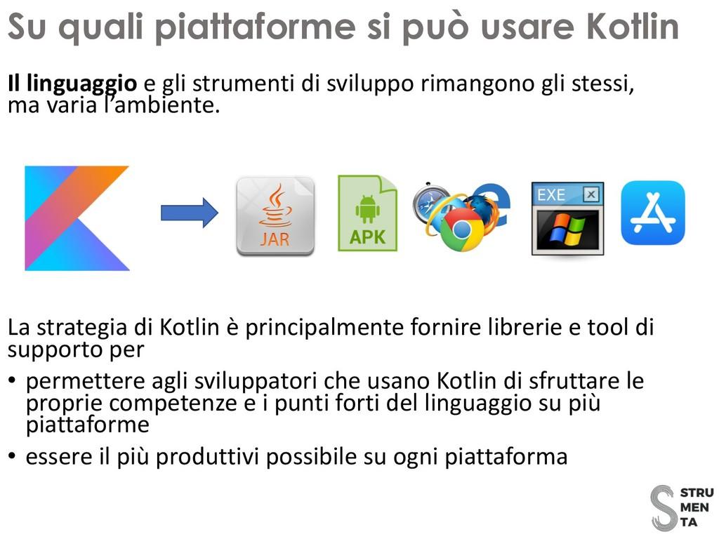 Il linguaggio e gli strumenti di sviluppo riman...