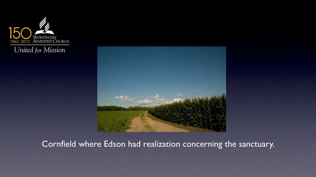 Cornfield where Edson had realization concerning...