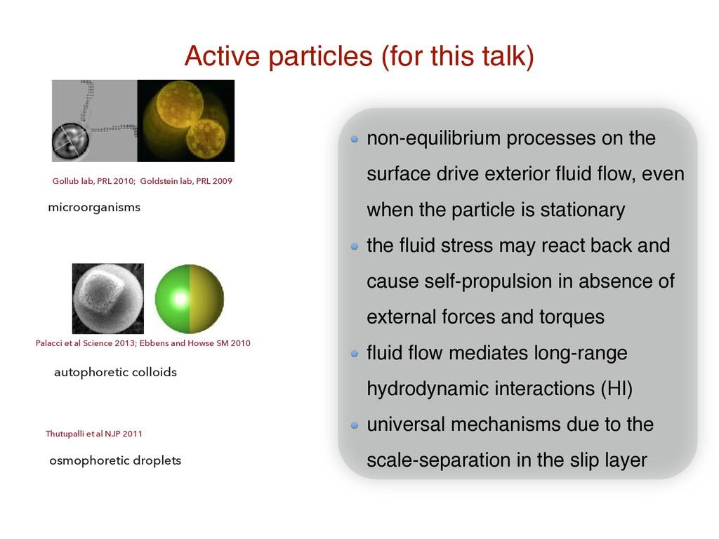 Active particles (for this talk) Gollub lab, PR...