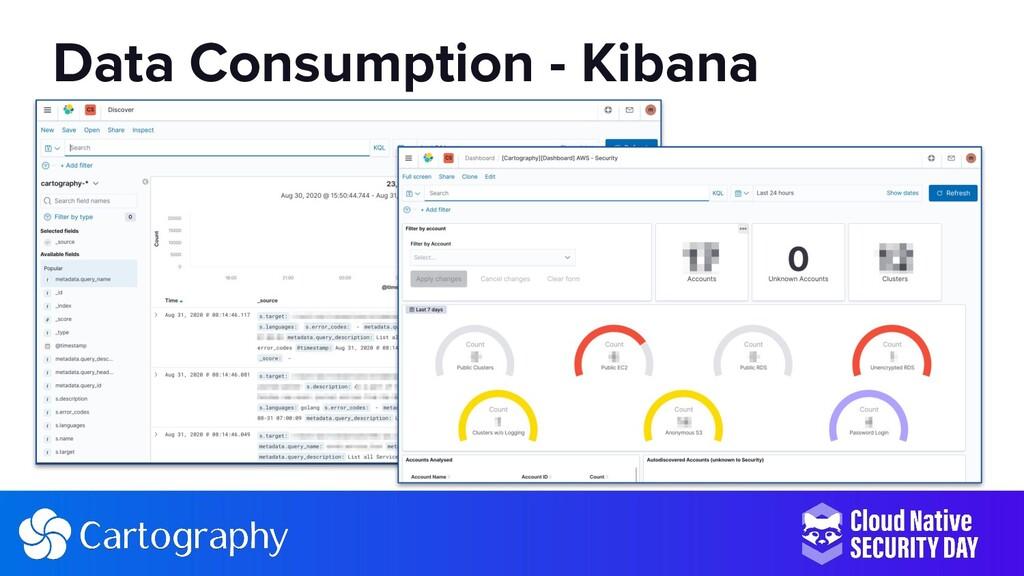 Data Consumption - Kibana