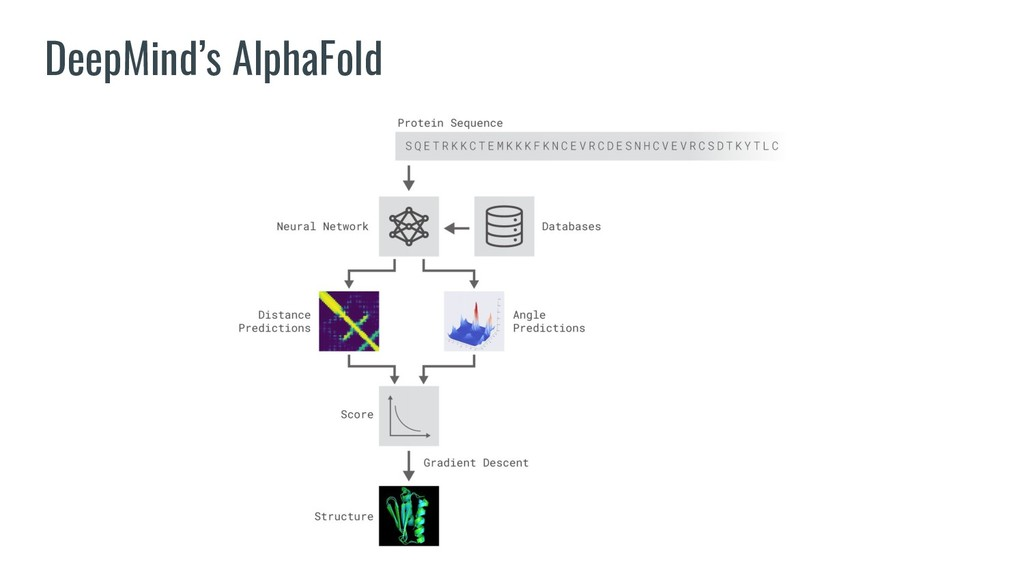DeepMind's AlphaFold