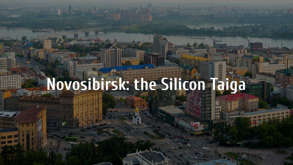 Novosibirsk: the Silicon Taiga