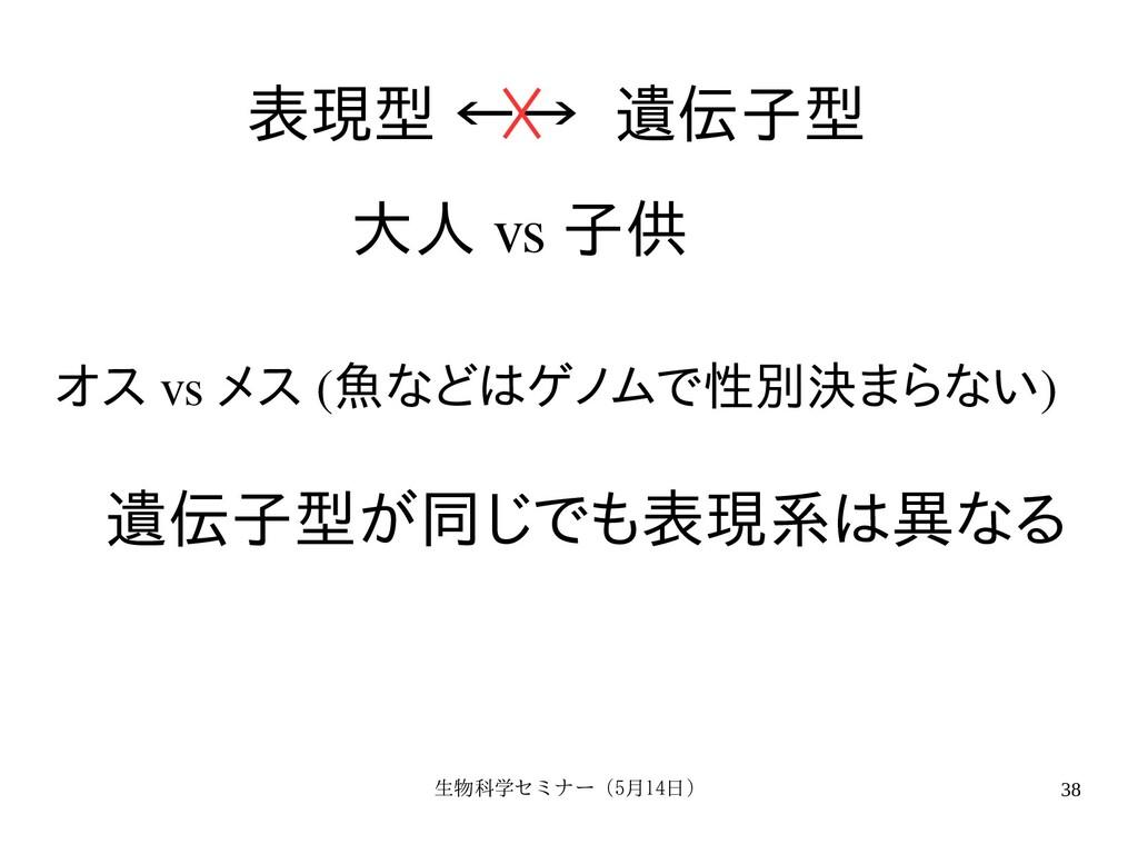生物科学セミナー(5月セミナー(5月14日)月14日) 38 表現型 ←→ 遺伝子のプロ型 大...