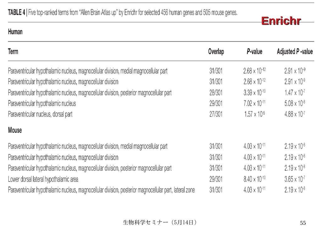 生物科学セミナー(5月セミナー(5月14日)月14日) 55 Enrichr Enrichr