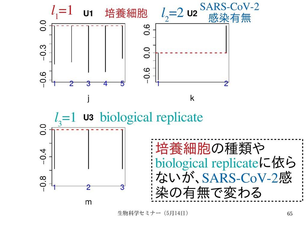 生物科学セミナー(5月セミナー(5月14日)月14日) 65 l 1 =1 l 2 =2 l ...