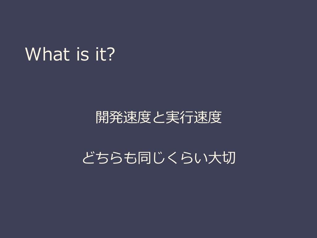What is it? 開発速度と実行速度 どちらも同じくらい大切
