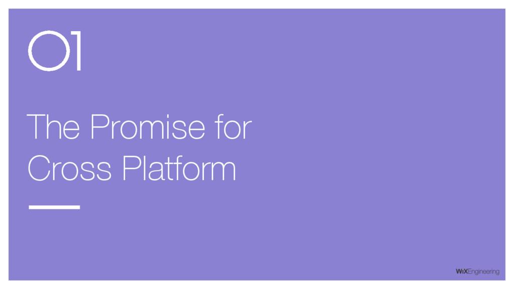 The Promise for Cross Platform 01