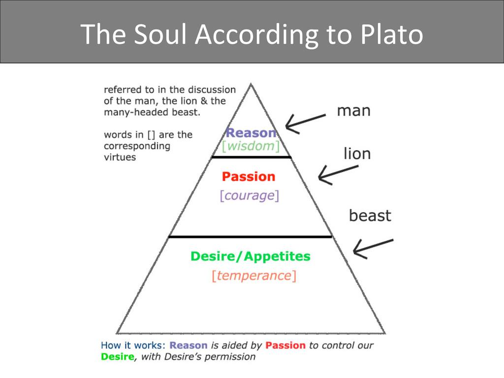 The Soul According to Plato