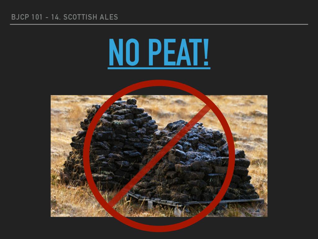 BJCP 101 - 14. SCOTTISH ALES NO PEAT!