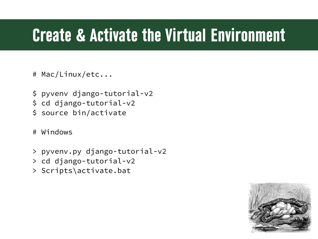 Create & Activate the Virtual Environment # Mac...