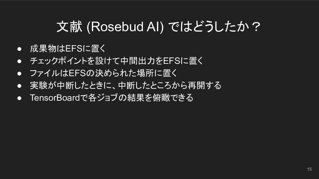 文献 (Rosebud AI) ではどうしたか? 15 ● 成果物はEFSに置く ● チェック...