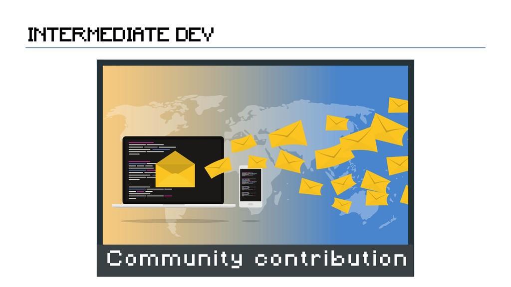 INTERMEDIATE DEV Community contribution