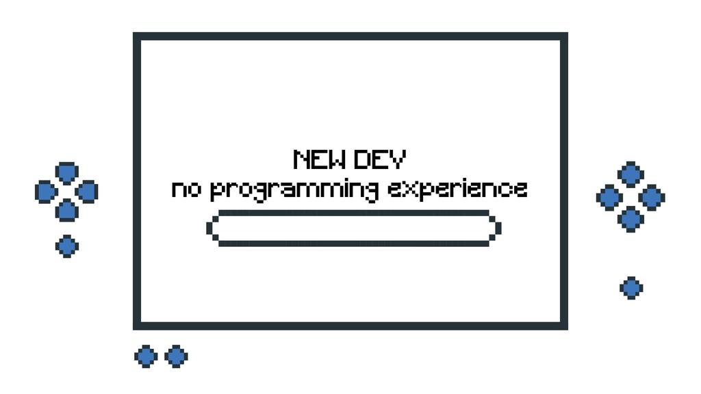 NEW DEV no programming experience
