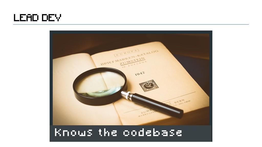 LEAD DEV Knows the codebase